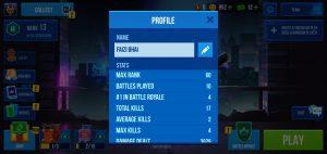 Bullet Echo Profile